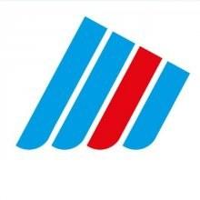 Der Flügel logo