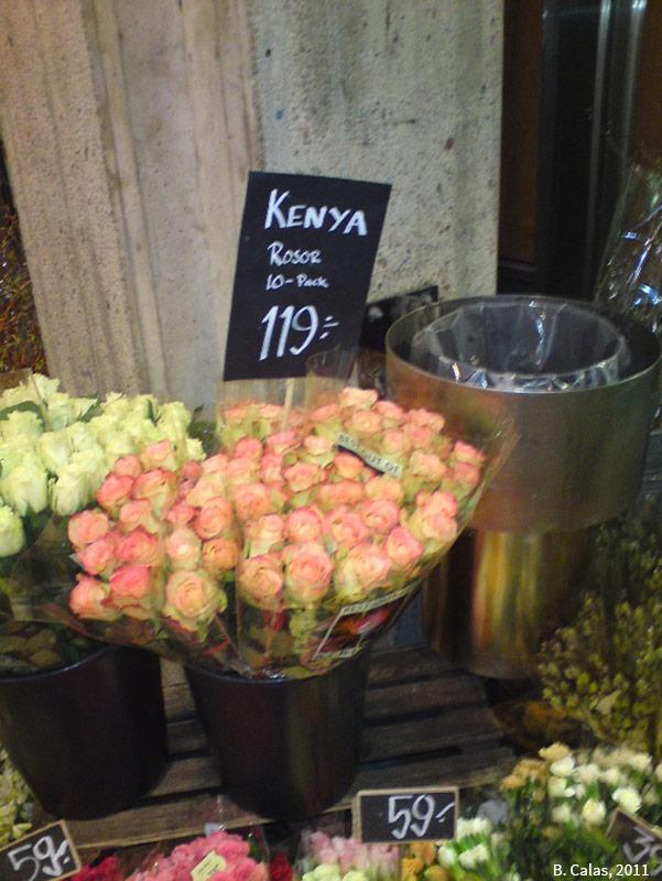 Bouquets de roses en provenance du Kenya en vente chez un fleuriste de Stockholm