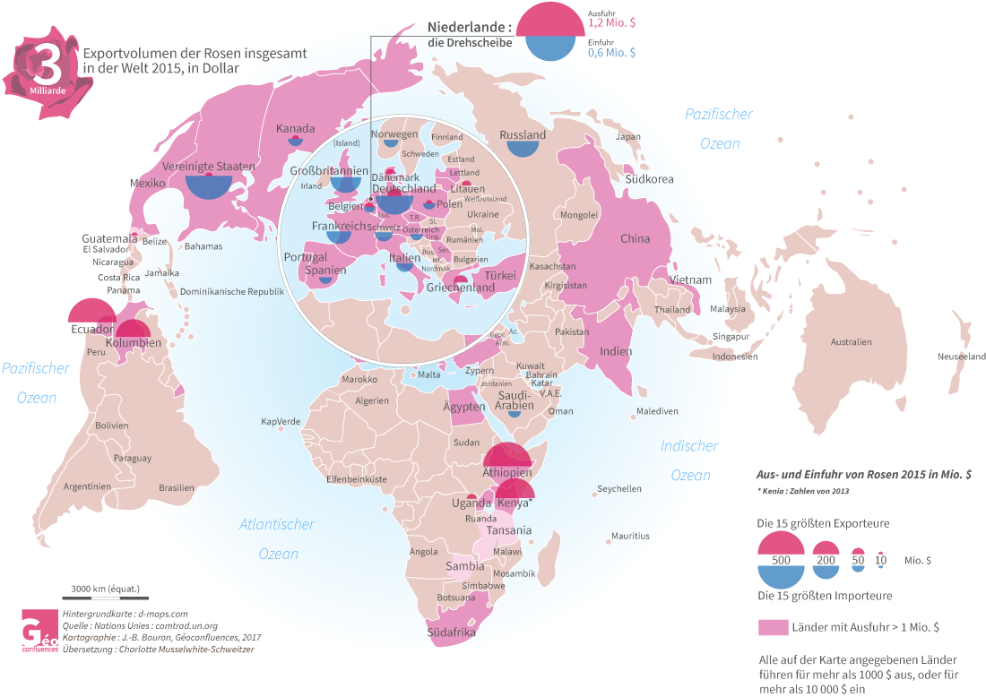 carte du marché mondial des roses