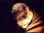 vignette-maske_1383480981373-jpg