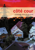 cote-cour-150_1402648331680-jpg