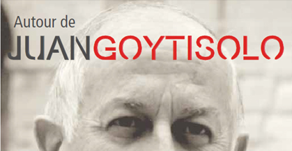 goytisolo4_1365262852075-jpg