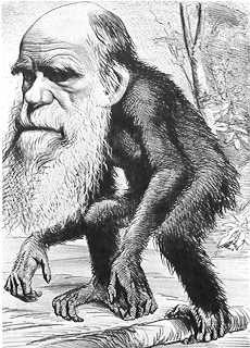 Darwin caricaturé avec un grand corps de singe, dans le magazine Hornet