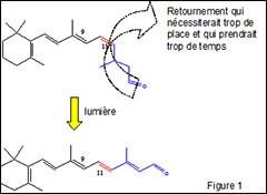 Proteine-spectroscopie_fig-1.jpg